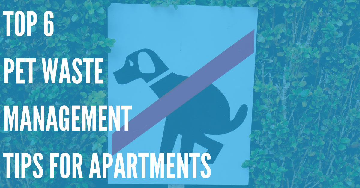 What to Do When Tenants Don't Pick up Pet Waste at Your Apartments
